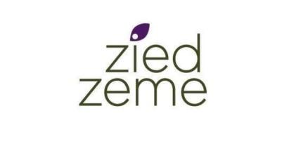 x_large_ZZ_Logo2